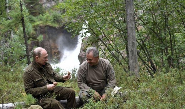 هذا ما فعله بوتين في غابات