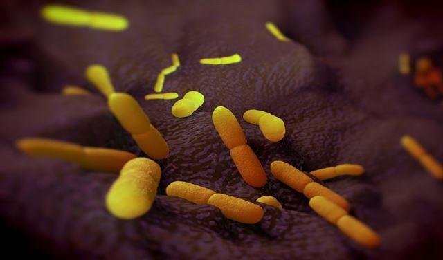 """ظهور """"البكتيريا الأخطر"""" في التاريخ... والصين تُحذّر!"""