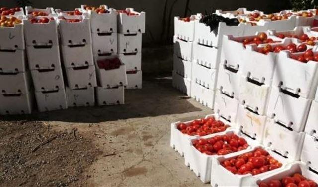 توقيف شاحنة محملة بالبندورة السورية المهربة في العبودية