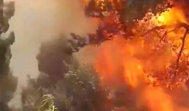 النيران تَلتَهم عكار مُجدداً (صور وفيديو)