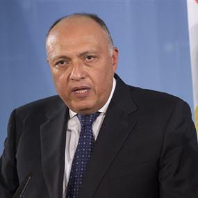 شكري: العمليات العسكرية تجري بالتنسيق مع الجيش الليبي