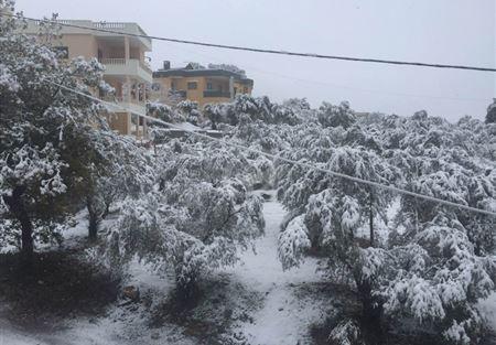 تساقط الثلوج في الضنية ألحق أضرارًا بالمزروعات