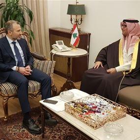 باسيل: سنقوم بكل ما يلزم من أجل تشجيع السعوديين على العودة