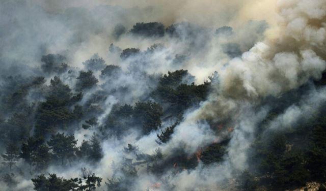الدولة اللبنانية تبيع طائرات إطفاء الحرائق... ومساحات لبنان الخضراء مفتوحة لأبواب جهنم!