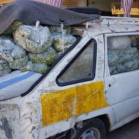بالصور: ضبط كمية من الخضار المهربة عبر الحدود السورية