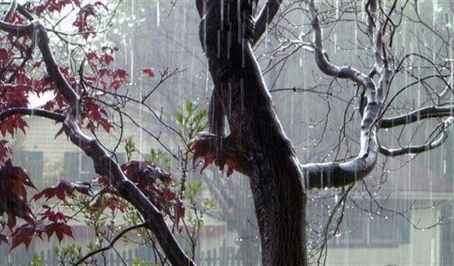 الخريف يبدأ عاصفًا... هذا ما ينتظرنا!