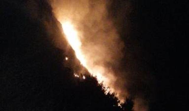 """بالصورة: حريق كبير في """"كوسبا"""""""