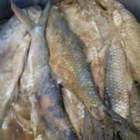 اغلاق مزرعة لتربية الاسماك بالشمع الاحمر في الهرمل